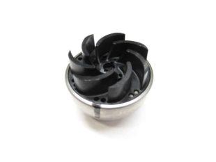 rotor xylem